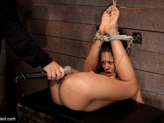 Lengthy legs, and massive nipples, endures sole caning, finger screwing 'til squirting. Ache &   !