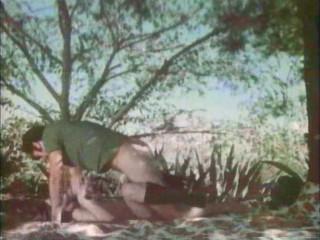 2 Sis (1973)