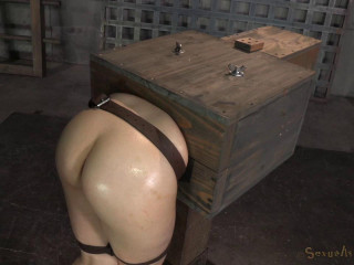 Fresh encountered Amy Faye roped in a wooden box
