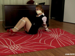 Secretary Hogtied Secretary Swept Away