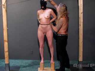 Interrogation of slave abigail - Abigail Dupree,Master James