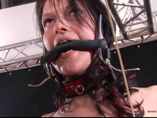 Bondage and Torture Academy screen 5