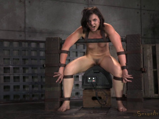 Super-cute Tiny Amy Faye Belted Down Onto Sybian saddle