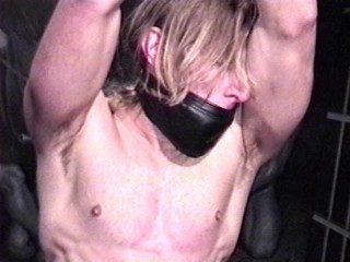 The Woodshed embarks in an secluded shed where tall blond newcomer Tom Daniels waits roped up