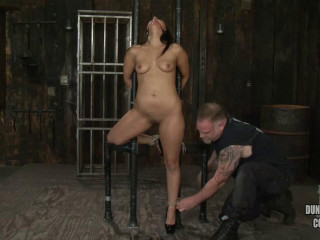 A Excellent Day of Domination & submission