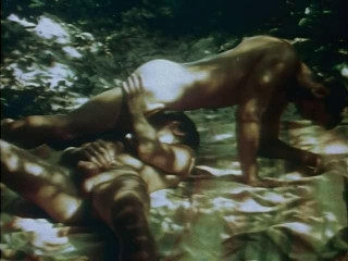 Boys in the Sand (1971) - Casey Donovan, Peter Fisk, Tommy Moore