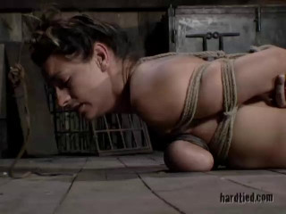 This is a playful and intense restrain bondage and whipping session that has her