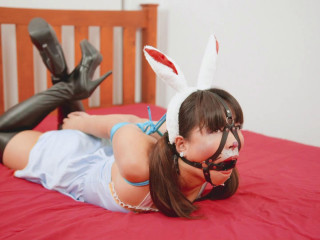 Restrained Feels - Bunny Rabbit Gets Hog-tied