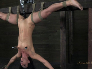 Massive screaming slave