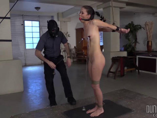 Dungeon Corp - Alaina Kristar - Training the Slut
