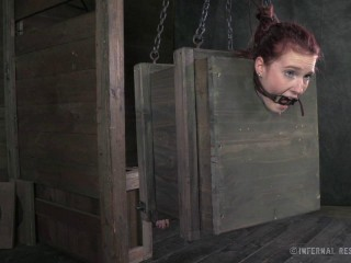 Ashley Lane Whipped, Bound And Boxed (2014)