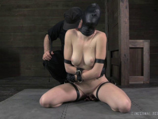 Whipped, bound and boxed
