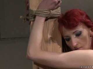 Dominated Girls - His personal object
