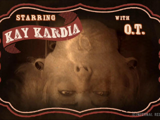 IR - Jan 23, 2015 - Karnival Kunt - Kay Kardia