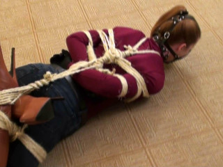 Gagged and Hogtied