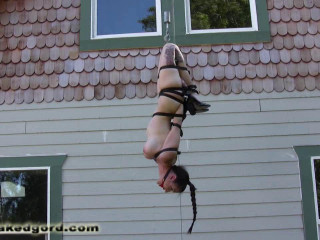 Dilemma of the Dangling Damsel