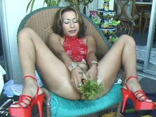 Jasmine's Veggie Shoot