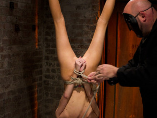 Little Southern Belle hung upside down, clamped, flogged, her yam-sized puffies tortured, made to jism hard!