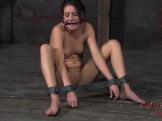 Cock-squeezing Smash  Taylor Mae