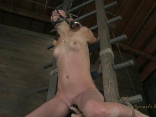 Brutal Suspended Ladder Bondage - Amber Rayne - HD 720p