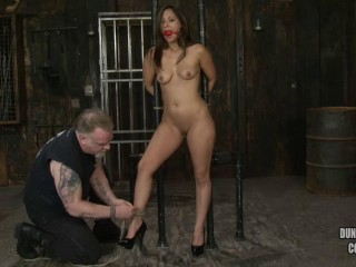 A Superb Day of Domination & submission Reena (2013)