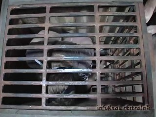 Caged Cumslut Part One
