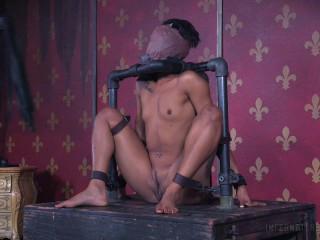 Cuntorted , Nikki Darling , HD 720p