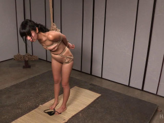 Marica Hase - Return to Kinbaku