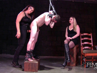 Strap-on Interrogation