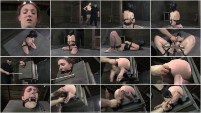 Whipped, Bound and Boxed - Ashley Lane.
