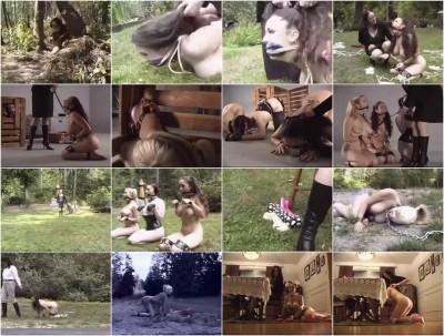 My Life As A Pet 1 (2003)