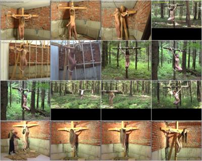 Crux Dreams Video Collection 5