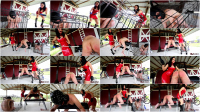ClubDom - Mistress Crystal Rush Punishes Her Bitches