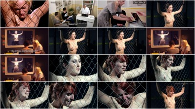 Mood-Pictures - The Milgram Experiment 4 HD 2015