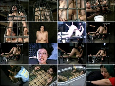 Insex - 101s Endurance (Live Feed From June 6) RAW