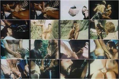 El Paso Wrecking Corp (1977) — Fred Halsted, Richard Locke, Jared Benson