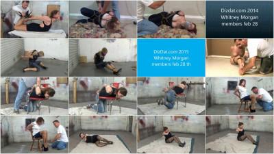 DizDat Collection 50 Clips Part 3