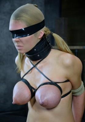 Hot BDSM delight