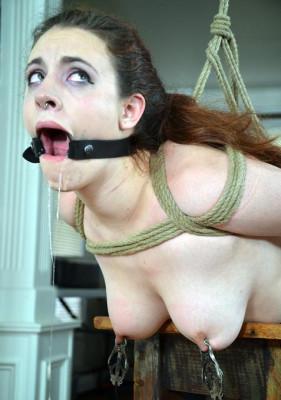 Domestic slave