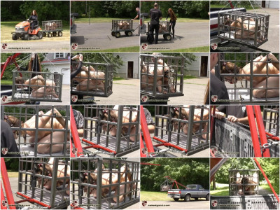 [NakedGord.com]Charlotte Pichard Caged Part 2(2010/Pichard Cage/size: 73.5 MB)