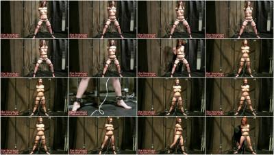 The Bondage Channel - Ashley Graham