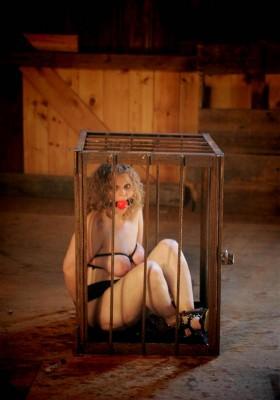 The prisoner to hard BDSM
