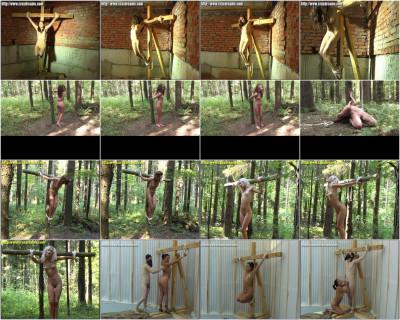 Crux Dreams Video Collection 1