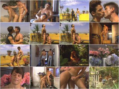Catalina — The Getaway (1993)