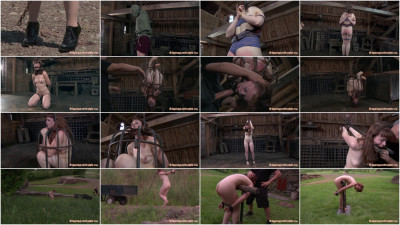 Back to the Barn - download, bondage, cocks, hard, good