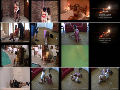 Sandra Silvers Video Collection 5