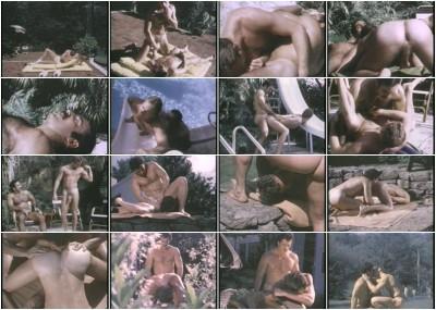 Bullet Videopac Vol. 9 (1982) — Bruno, Bud Olsen, Josh Kincaid