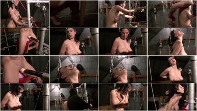 Toaxxx - Training Slave Eva