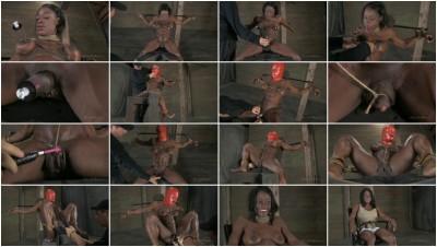 SB Professional Bodybulder Helpless! Ashley Starr - Oct 26, 2012
