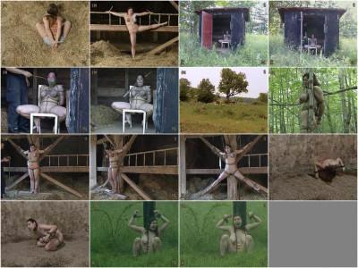 Insex — Pig Farm